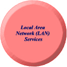 Local Area Network (LAN) Services